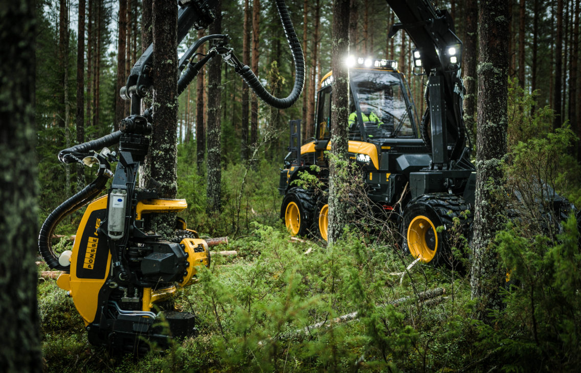 Harvester machine driving through a forest and cutting wood