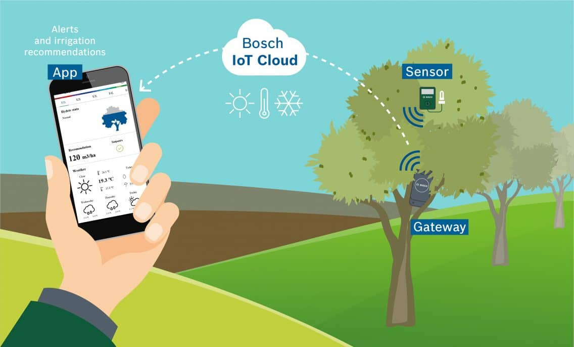 Graphic explaining the smart irrigation solution by Bosch